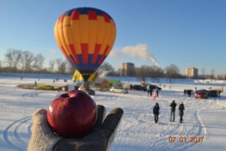 Яблоки на снегу 2017. Великие Луки